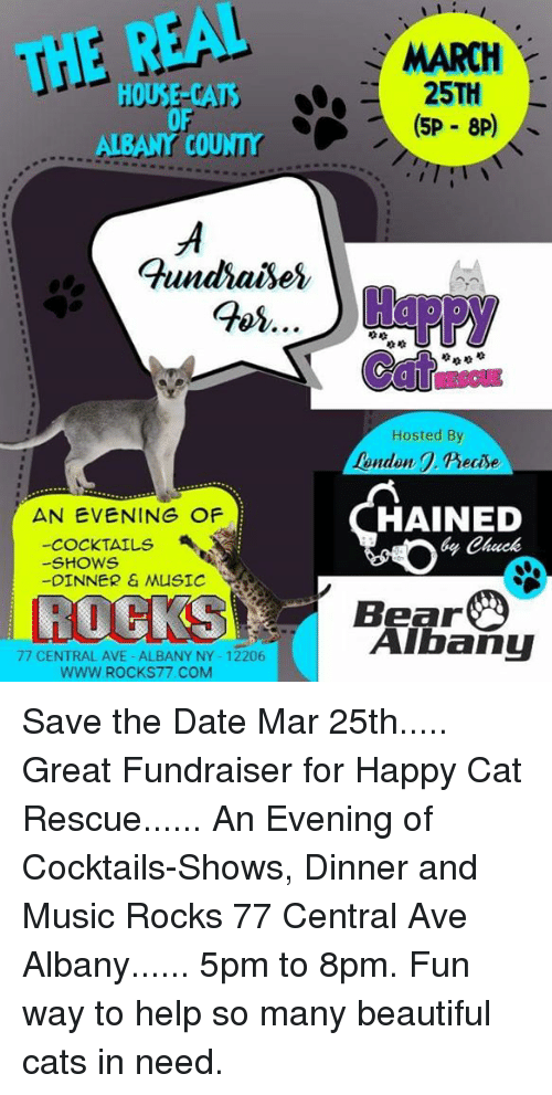 Happy Cat Rescue Altamont Ny