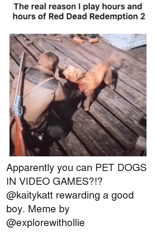 Apparently, Dogs, and Meme: The real reason I play hours and  hours of Red Dead Redemption 2 Apparently you can PET DOGS IN VIDEO GAMES?!? @kaitykatt rewarding a good boy. Meme by @explorewithollie