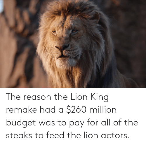 The Lion King, Budget, and Lion: The reason the Lion King remake had a $260 million budget was to pay for all of the steaks to feed the lion actors.