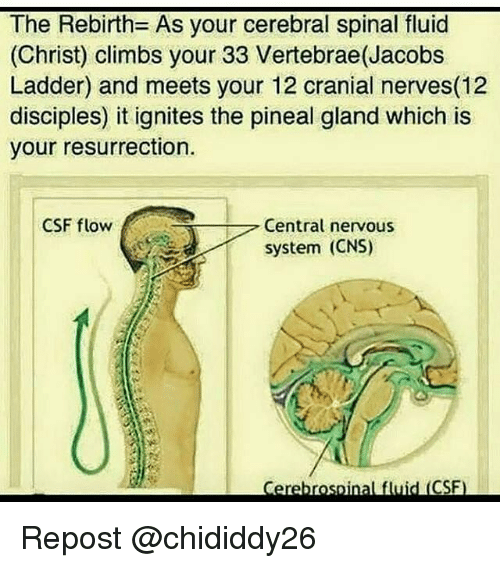how to know when your pineal gland is decalcified