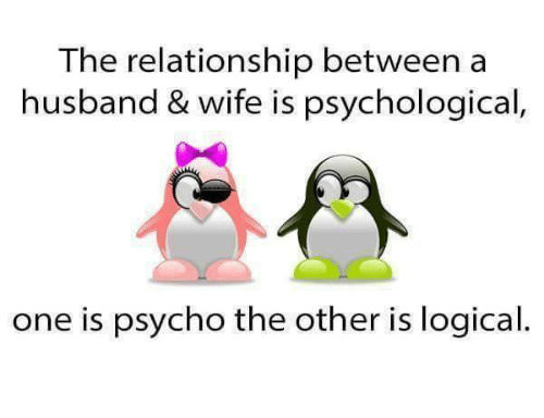 funny logic and relationships the relationship between a husband wife is psychological