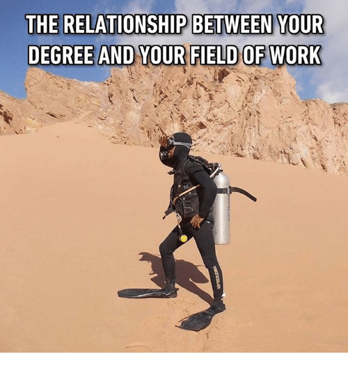 Memes, Work, and 🤖: THE RELATIONSHIP BETWEEN YOUR  DEGREE AND YOUR FIELD OF WORK
