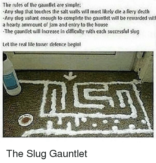 Life, Death, and House: The rules of the gauntlet are simple:  Any slug that touches the salt walls will most likely die a fiery death  -Any slug valiant enough to complete the gauntll bo rewarded with  a hearty ammount of Jam and entry to the house  The gaunllet l Incease in difficully with cach successful slug  Let the real life tower defence beginl The Slug Gauntlet