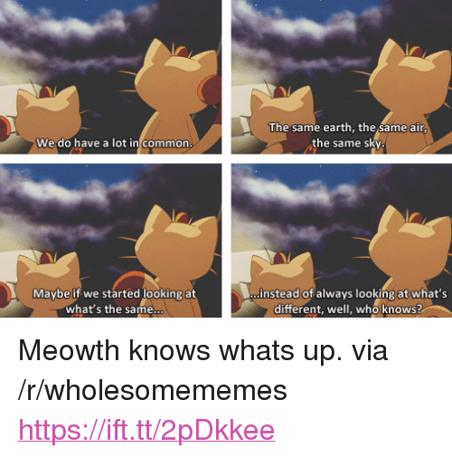 """Common, Earth, and Air: The same earth, the same air  the same sky  We do have a lot in common  Maybe if we started looking at  instead of always looking at what's  what's the same  different, well, who knows? <p>Meowth knows whats up. via /r/wholesomememes <a href=""""https://ift.tt/2pDkkee"""">https://ift.tt/2pDkkee</a></p>"""