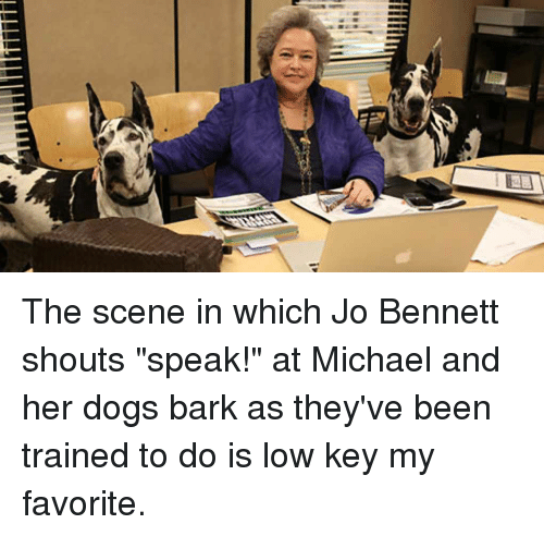 Dogs, Low Key, and The Office