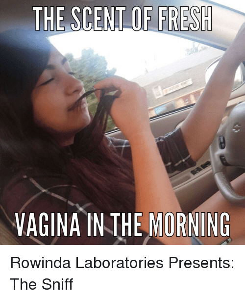 Funny vagina pictures