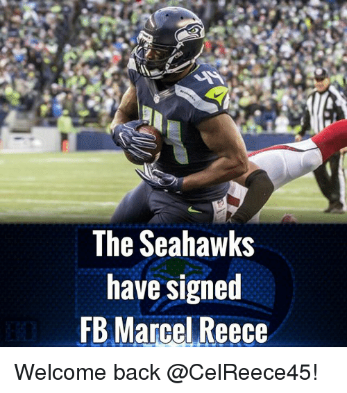Memes, Seahawks, and Back: The Seahawks  have signed  FB Marcel Reece Welcome back @CelReece45!