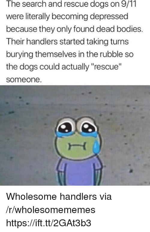 "9/11, Bodies , and Dogs: The search and rescue dogs on 9/11  were literally becoming depressed  because they only found dead bodies.  Their handlers started taking turns  burying themselves in the rubble so  the dogs could actually ""rescue""  someone Wholesome handlers via /r/wholesomememes https://ift.tt/2GAt3b3"