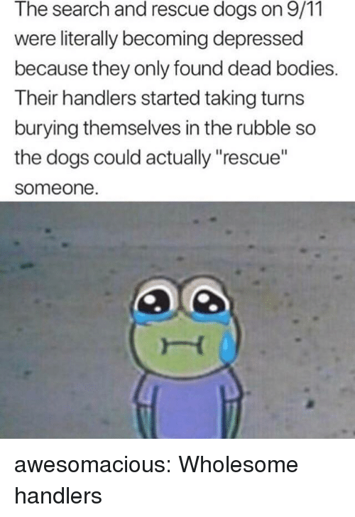 """9/11, Bodies , and Dogs: The search and rescue dogs on 9/11  were literally becoming depressed  because they only found dead bodies.  Their handlers started taking turns  burying themselves in the rubble so  the dogs could actually """"rescue""""  someone awesomacious:  Wholesome handlers"""