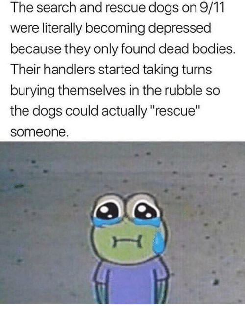 """9/11, Bodies , and Dogs: The search and rescue dogs on 9/11  were literally becoming depressed  because they only found dead bodies.  Their handlers started taking turns  burying themselves in the rubble so  the dogs could actually """"rescue""""  someone"""
