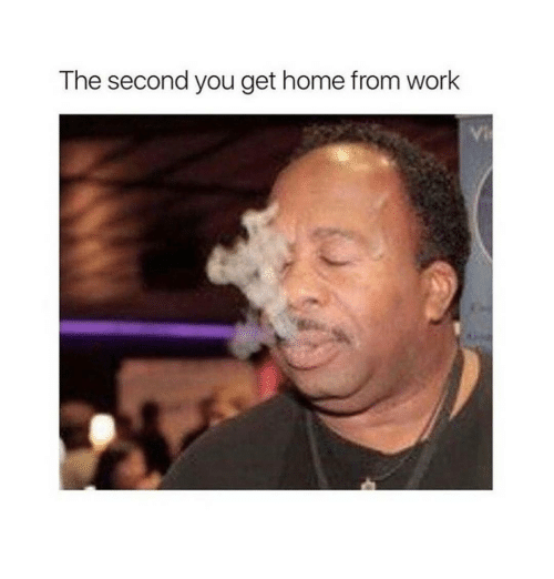 Memes, 🤖, and Working: The second you get home from Work
