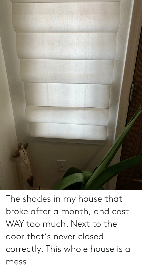 My House, Too Much, and House: The shades in my house that broke after a month, and cost WAY too much. Next to the door that's never closed correctly. This whole house is a mess