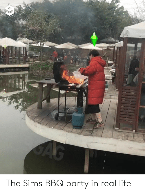 Dank, Life, and Party: The Sims BBQ party in real life