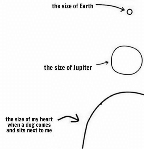 Earth, Heart, and Jupiter: the size of Earth  the size of Jupiter  the size of my heart  when a dog comes  and sits next to me