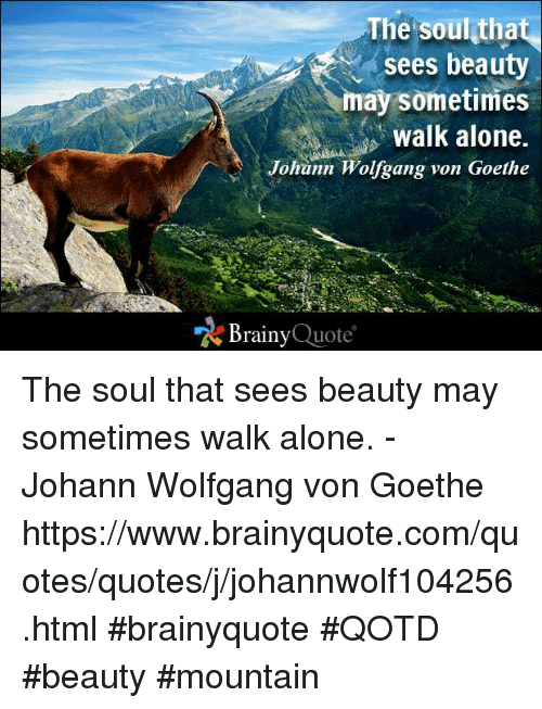 Memes, 🤖, and Goethe: The soul that  sees beauty  may sometimes  walk alone.  Johann Wolfgang von Goethe  Brainy  Quote The soul that sees beauty may sometimes walk alone. - Johann Wolfgang von Goethe https://www.brainyquote.com/quotes/quotes/j/johannwolf104256.html #brainyquote #QOTD #beauty #mountain