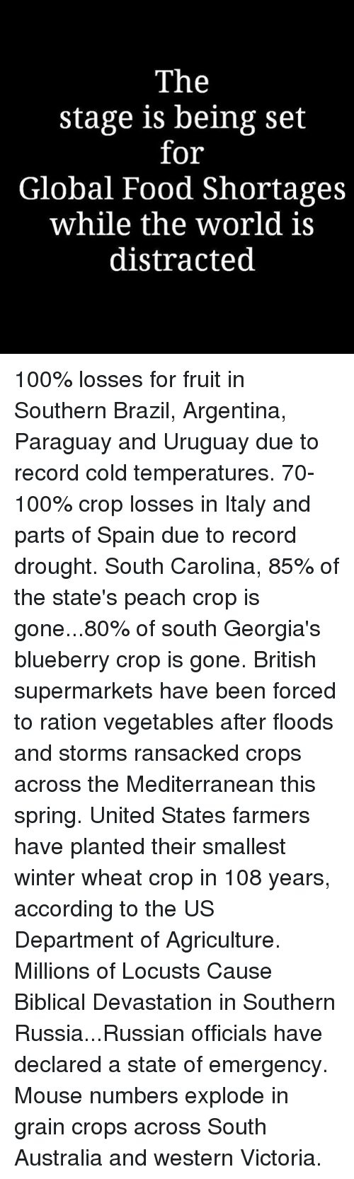Anaconda, Food, and Memes: The  stage is being set  for  Global Food Shortages  while the world is  distracted 100% losses for fruit in Southern Brazil, Argentina, Paraguay and Uruguay due to record cold temperatures. 70-100% crop losses in Italy and parts of Spain due to record drought. South Carolina, 85% of the state's peach crop is gone...80% of south Georgia's blueberry crop is gone. British supermarkets have been forced to ration vegetables after floods and storms ransacked crops across the Mediterranean this spring. United States farmers have planted their smallest winter wheat crop in 108 years, according to the US Department of Agriculture. Millions of Locusts Cause Biblical Devastation in Southern Russia...Russian officials have declared a state of emergency. Mouse numbers explode in grain crops across South Australia and western Victoria.