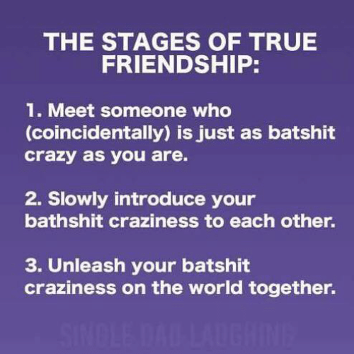 Crazy, Dad, and Dank: THE STAGES OF TRUE  FRIENDSHIP:  1. Meet someone who  (coincidentally) is just as batshit  crazy as you are.  2. Slowly introduce your  bathshit craziness to each other.  3. Unleash your batshit  craziness on the world together.  SINDLE DAD LAUGHINE