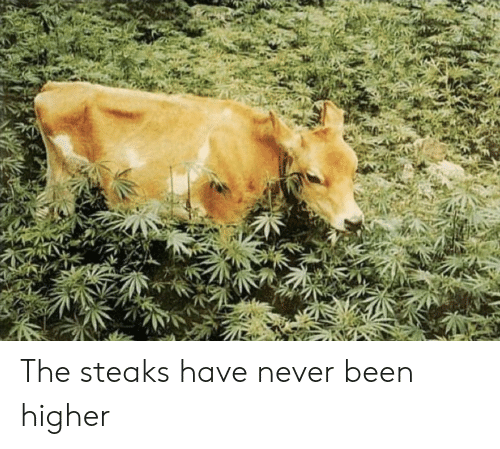 Never, Been, and The: The steaks have never been higher