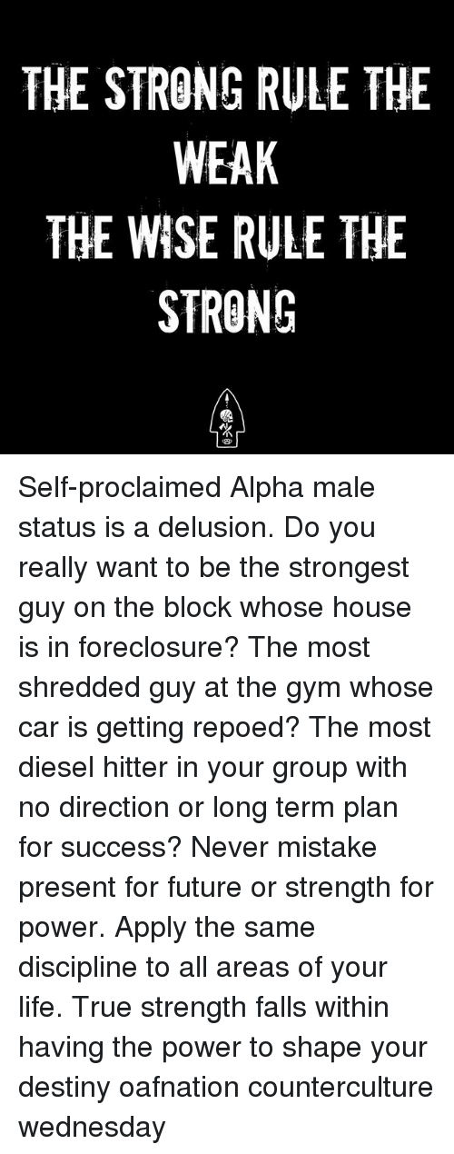 Destiny, Future, and Gym: THE STRONG RULE THE  WEAK  THE WISE RULE THE  STRONG  13厂 Self-proclaimed Alpha male status is a delusion. Do you really want to be the strongest guy on the block whose house is in foreclosure? The most shredded guy at the gym whose car is getting repoed? The most diesel hitter in your group with no direction or long term plan for success? Never mistake present for future or strength for power. Apply the same discipline to all areas of your life. True strength falls within having the power to shape your destiny oafnation counterculture wednesday
