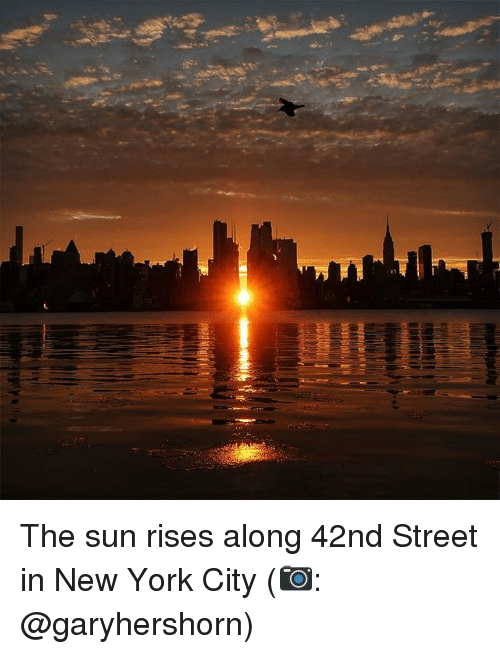 Memes, New York, and New York City: The sun rises along 42nd Street in New York City (📷: @garyhershorn)