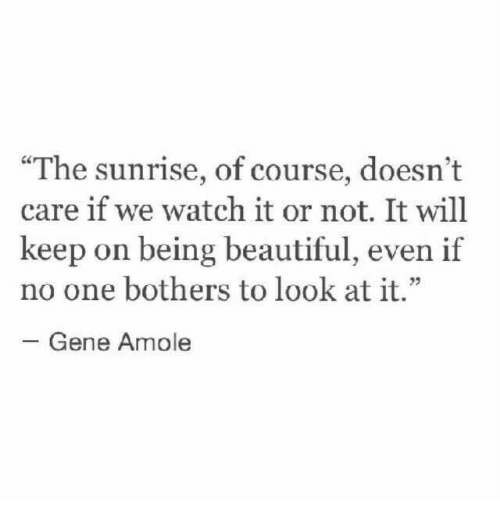 """Beautiful, Sunrise, and Watch: """"The sunrise, of course, doesn't  care if we watch it or not. It will  keep on being beautiful, even if  no one bothers to look at it.""""  23  Gene Amole"""