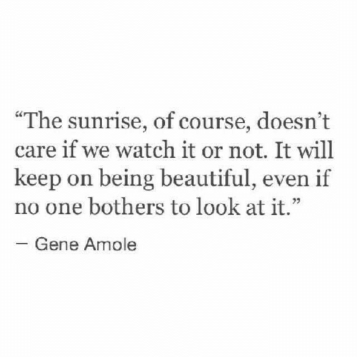 """Beautiful, Sunrise, and Watch: """"The sunrise, of course, doesn't  care if we watch it or not. It will  keep on being beautiful, even if  no one bothers to look at it.""""  03  Gene Amole"""