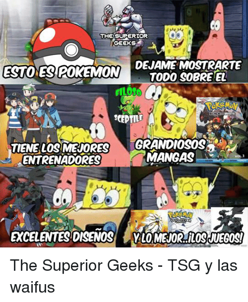 Memes, Superior, and 🤖: THE SUPERIOR  GEEKS  DEJAMEMOSTRARTE  ESTONES POKEMON  TODO SOBRETEL  TIENE LOSSMERIORES  MANGASI  ENTRENADORES  EXCELENTETSIDISSENOS The Superior Geeks - TSG y las waifus
