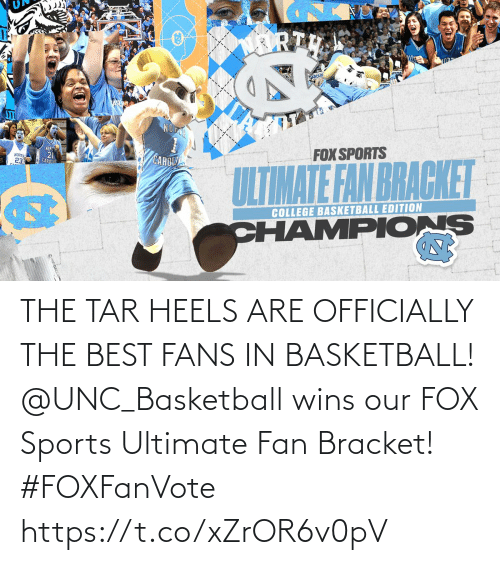 Basketball, Memes, and Sports: THE TAR HEELS ARE OFFICIALLY THE BEST FANS IN BASKETBALL!  @UNC_Basketball wins our FOX Sports Ultimate Fan Bracket! #FOXFanVote https://t.co/xZrOR6v0pV