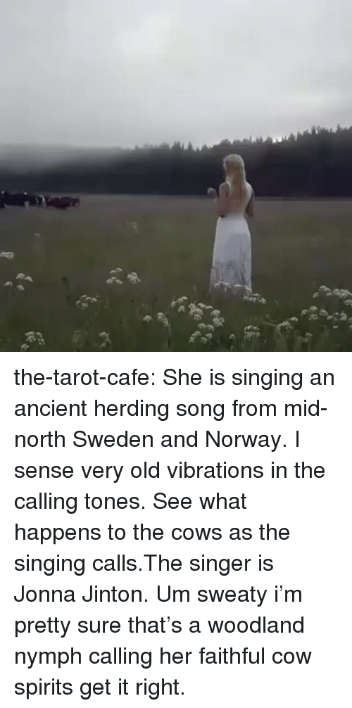 Singing, Tumblr, and Blog: the-tarot-cafe:    She is singing an ancient herding song from mid-north Sweden and Norway. I sense very old vibrations in the calling tones. See what happens to the cows as the singing calls.The singer is Jonna Jinton.    Um sweaty i'm pretty sure that's a woodland nymph calling her faithful cow spirits get it right.