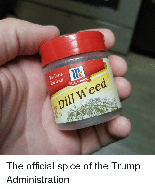 The Taste Lle TM McCormick Dill Weed the Official Spice of