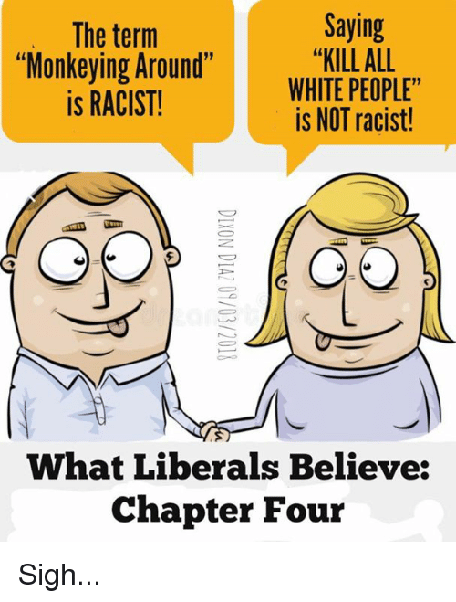 "Memes, White People, and White: The term  ""Monkeying Around""  is RACIST!  Saying  ""KILL ALL  WHITE PEOPLE""  is NOT racist!  What Liberals Believe:  Chapter Four Sigh..."