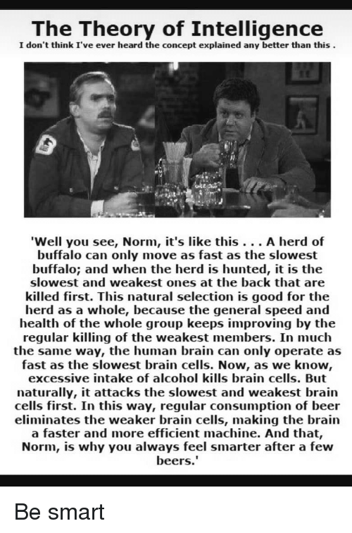 Beer, Alcohol, and Brain: The Theory of Intelligence  I don't think I've ever heard the concept explained any better than this  'Well you see, Norm, it's like this... A herd of  buffalo can only move as fast as the slowest  buffalo; and when the herd is hunted, it is the  slowest and weakest ones at the back that are  killed first. This natural selection is good for the  herd as a whole, because the general speed and  health of the whole group keeps improving by the  regular killing of the weakest members. In much  the same way, the human brain can only operate as  fast as the slowest brain cells. Now, as we know,  excessive intake of alcohol kills brain cells. But  naturally, it attacks the slowest and weakest brain  cells first. In this way, regular consumption of beer  eliminates the weaker brain cells, making the brain  a faster and more efficient machine. And that,  Norm, is why you always feel smarter after a few  beers Be smart