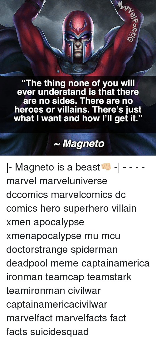 """Memes, SpiderMan, and Superhero: """"The thing none of you will  ever understand is that there  are no sides. There are no  heroes or villains. There's just  what I want and how I'll get it.""""  Magneto 