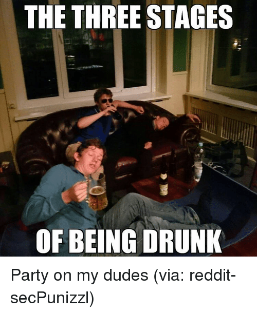 The Three Stages Of Being Drunk Party On My Dudes Via Reddit