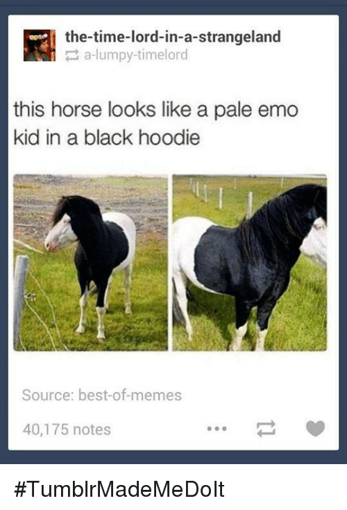 Dank, 🤖, and Lord: the time-lord-in-a-strangeland  a lumpy timelord  this horse looks like a pale emo  kid in a black hoodie  Source: best-of-memes  40,175 notes #TumblrMadeMeDoIt