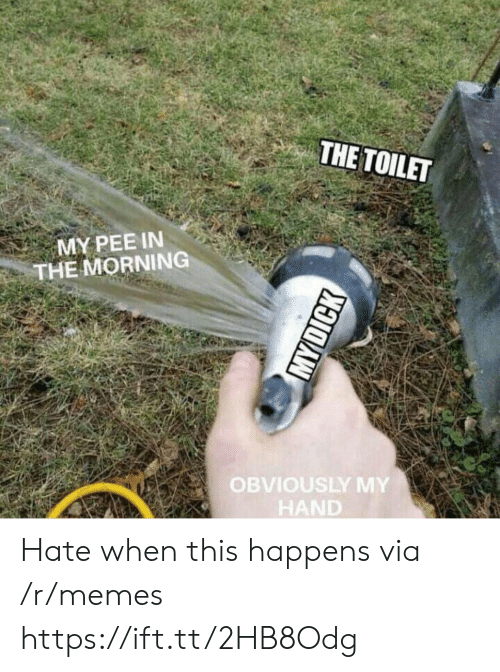 Memes, Via, and Href: THE TOILET  MY PEE IN  THE MORNING  OBVIOUSLY MY  HAND Hate when this happens via /r/memes https://ift.tt/2HB8Odg