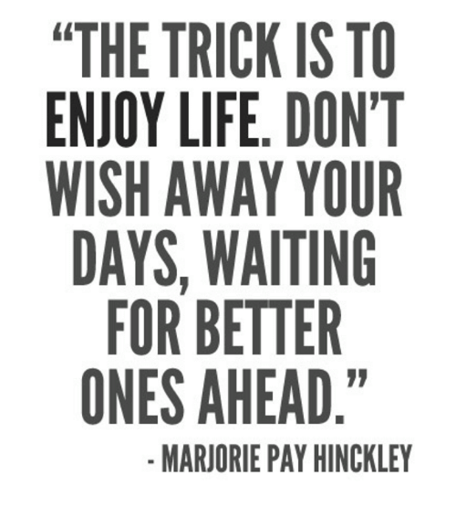 """Life, Memes, and Waiting...: """"THE TRICK IS TO  ENJOY LIFE. DON'T  WISH AWAY OUR  DAYS, WAITING  FOR BETTER  ONES AHEAD.""""  MARJORIE PAY HINCKLEY"""