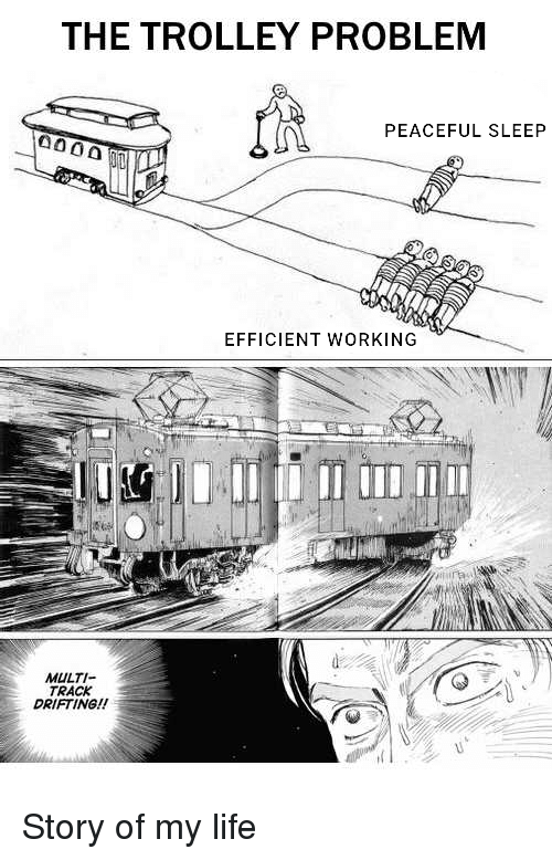 Life, Reddit, and Trolley: THE TROLLEY PROBLEM  PEACEFUL SLEEP  EFFICIENT WORKING  MULTI  TRACK  DRIFTING!!