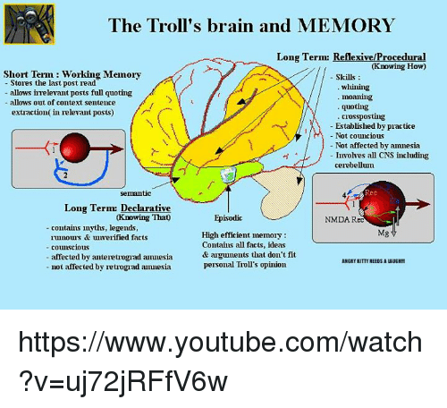 What Part Of The Brain Stores Memory >> The Troll S Brain And Memory Long Term Reflexiveprocedural Knowing