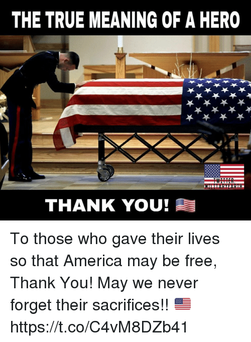 America, Memes, and True: THE TRUE MEANING OF A HERO  THANK YOU To those who gave their lives so that America may be free, Thank You! May we never forget their sacrifices!! 🇺🇸 https://t.co/C4vM8DZb41