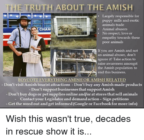 The TRUTH ABOUT T HE AMISH Largely Responsible for Puppy Mills and
