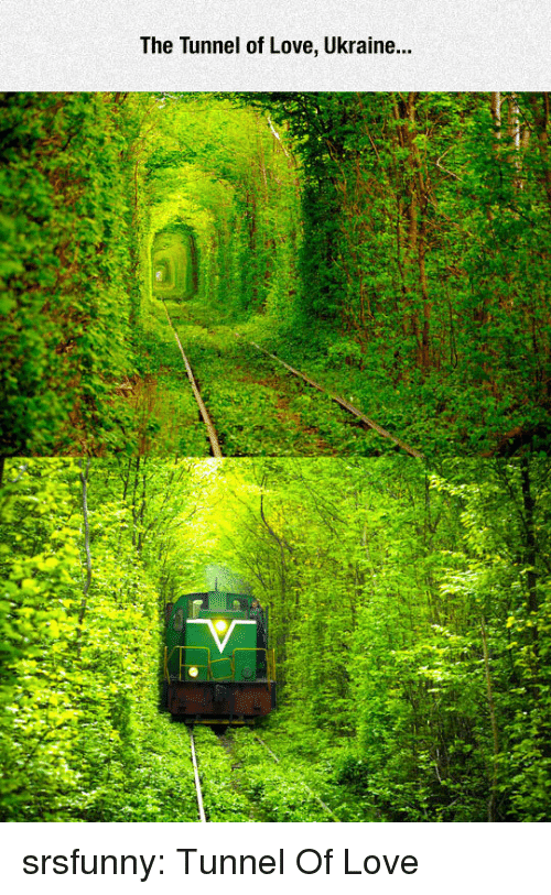 Love, Tumblr, and Blog: The Tunnel of Love, Ukraine... srsfunny:  Tunnel Of Love