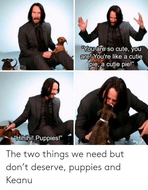 Puppies, Don, and Keanu: The two things we need but don't deserve, puppies and Keanu