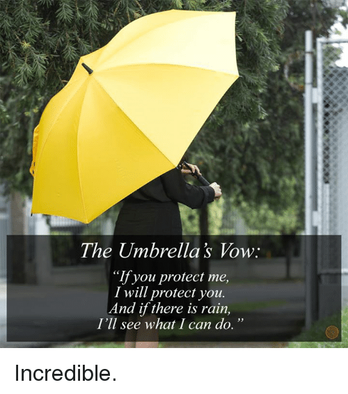 The Umbrellas Vow If You Protect Me I Will Protect You And If There