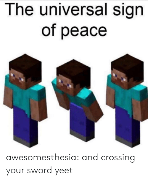 Tumblr, Blog, and Peace: The universal sign  of peace awesomesthesia:  and crossing your sword yeet