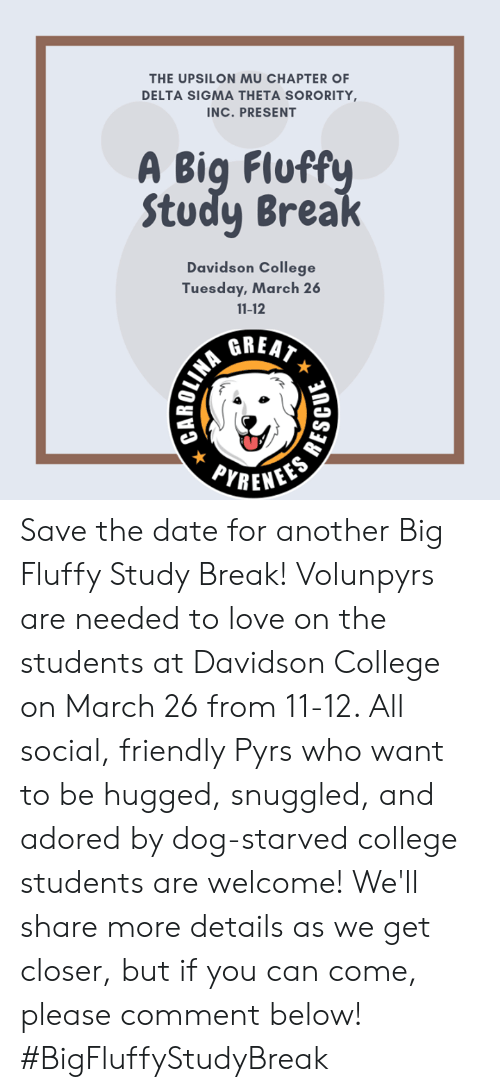 College, Love, and Memes: THE UPSILON MU CHAPTER OF  DELTA SIGMA THETA SORORITY  INC. PRESENT  A Big Fluff  Study Brea  Davidson College  Tuesday, March 26  11-12  GREAT  c> Save the date for another Big Fluffy Study Break! Volunpyrs are needed to love on the students at Davidson College on March 26 from 11-12. All social, friendly Pyrs who want to be hugged, snuggled, and adored by dog-starved college students are welcome! We'll share more details as we get closer, but if you can come, please comment below! #BigFluffyStudyBreak