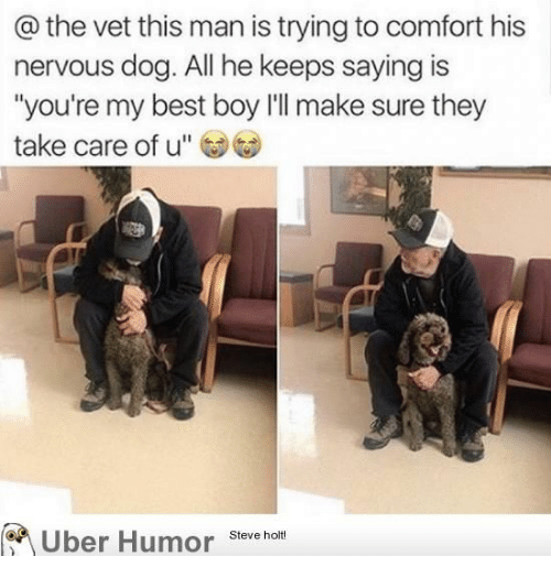 """Uber, Best, and Boy: @ the vet this man is trying to comfort his  nervous dog. All he keeps saying is  """"you're my best boy l'll make sure they  take care of u""""  Uber Humor  Steve holt!"""