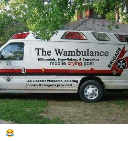 Books, Crying, and Memes: The Wambulance  Millennials, snowflakes, Cupcakes  mobile crying post  All Liberals Welcome, coloring  books & Crayons provided 😂