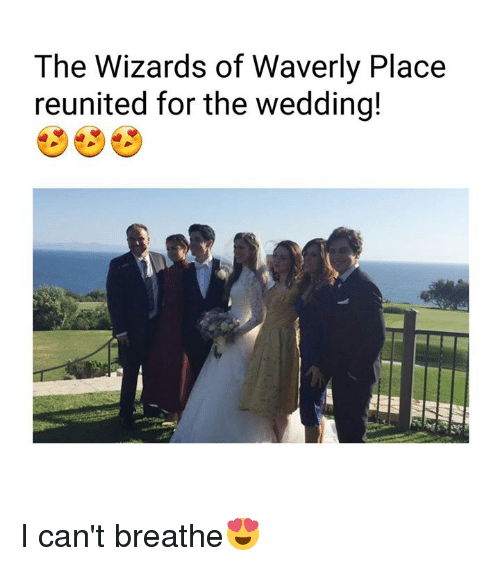 Dank, Wizards of Waverly Place, and Wizards: The Wizards of Waverly Place  reunited for the wedding! I can't breathe😍