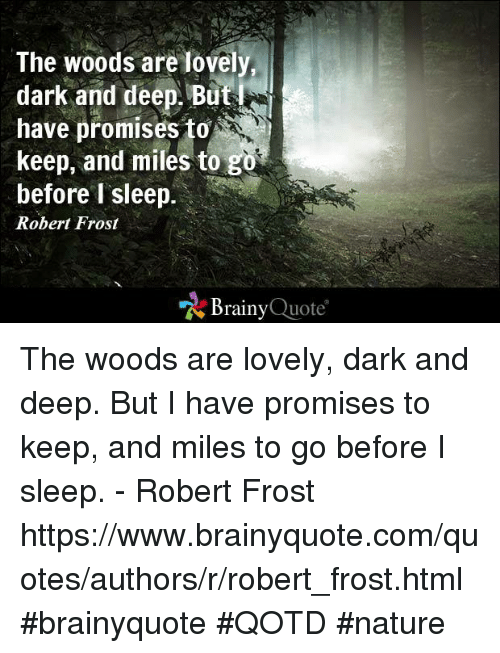 The Woods Are Dove Dark And Deep But Have Promises Keep And Miles To